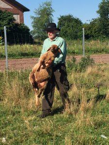 Bauer Pax mit einem Coburger Fuchsschaf